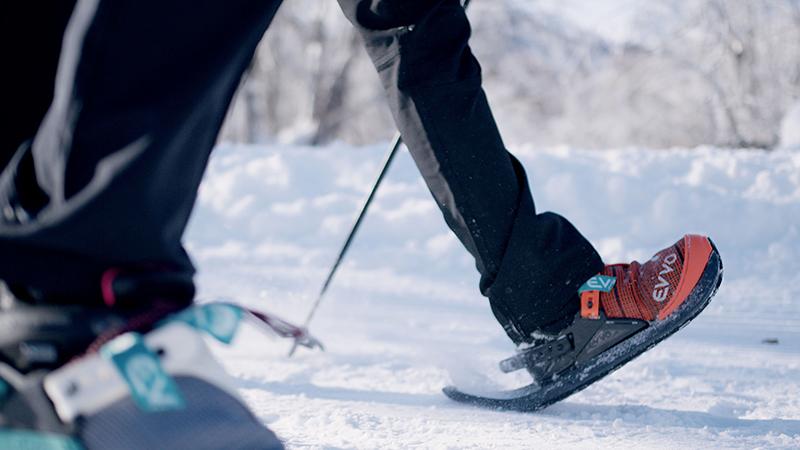 baton-marche-nordique-hiver